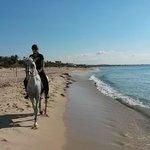 Ranch - balade sur la plage
