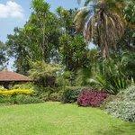 Kingdom Gardens