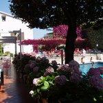 La piscine et les terrasses