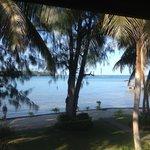 Tropical wonderland