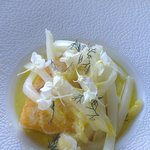 Snapper with fennel