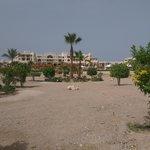 Aussenbereich vom Strand zum Hotel