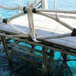 Warna biru yang mempesona & kejernihan air (plus karang & ikan) dilihat dari dermaga