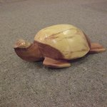 one of the turtles I had carved.He weighs about 1 kg