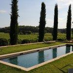 La piscine avec vue sur les vignes