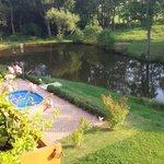 """POOL"" und Teich"