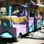 train decorated for Mardi Gras