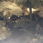 Walking Cenote