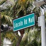 Unsere Rettung... DAS ist Miami Beach wie man es sich vorstellt