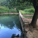 Vasca naturale