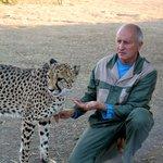 Uitleg over de cheetahs