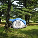 Do you enjoy the great out doors and tent camping?  Lots of privacy!