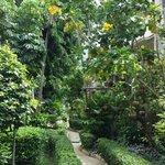 such lush gardens