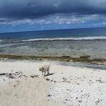 La plage en face de la pension