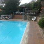 la piscine et le solarium