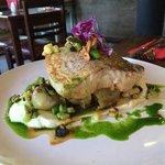 fish of the day dish, with cauliflower mash