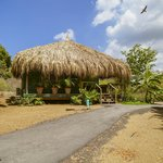 One of the palapa's
