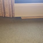 leakin AC wet moldy carpet
