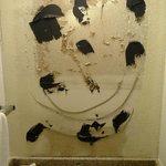 no bathroom mirror