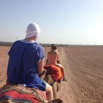 Camel riding - a must!