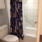 Shower/Toilet Area