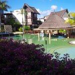 Salt water pool and swim up bar