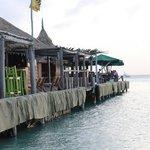 Pelican Next Pier