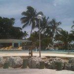 Poolside, Beachside