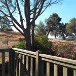 La vue de la terrasse du bungalow