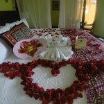 Honeymoon surprise!