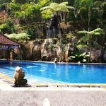 Bali Spirit pool ... lovey oasis