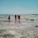 Mujeres en la playa buscando pulpos y caracoles
