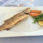 Seafood A La Carte