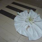 mooie bloem in de badkamer,met dank aan de poetsvrouw!!