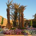 het hotel vanop het strand