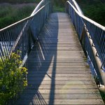 Bridge over Loch Long
