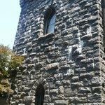 bird poop defacing the castle's beautiful walls
