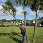 palm trees at the pitch and putt on Rothesay front