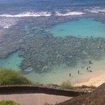 Hanauma Bay from above