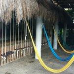 Swing bar near pool