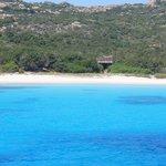 Mare isola di Spargi
