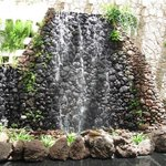 Waterfall in reception