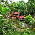 Rainforest Adventures: El Tour Del Campo (Paz del Campo Restaurant and Tilapia Farm)