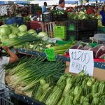 Market Tour