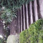 Steps to Raised Garden