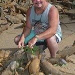 feeding the iguanas at the iguana farm