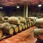Wine barrels on Tuscany wine tour