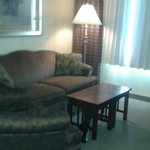 """living room"" sofa in suite. Chair in the room, too, but not in pic"