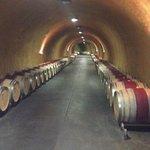 Underground Wine Cave