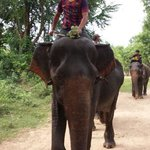 Fred met mahout